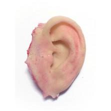 Uříznuté ucho
